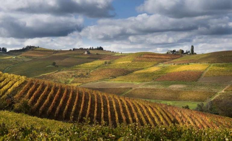 In Italia la Conferenza mondiale turismo vino